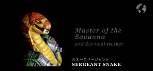Sergeant Snake ID