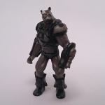 RotB Rhino pose